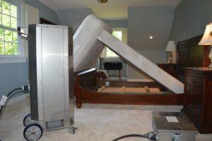bed bug treatment mattresses