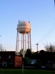 garner nc pest control water tower