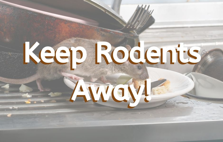 Keep Rodents Away!
