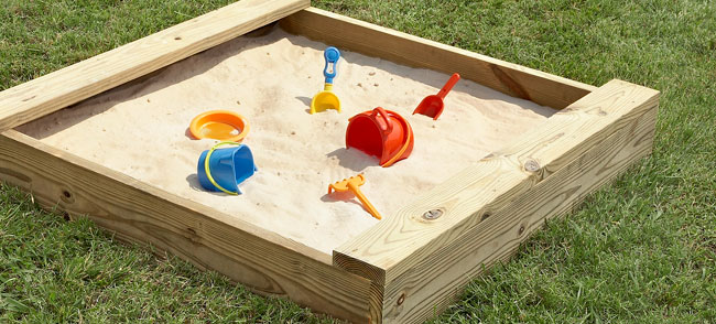 North Carolina Bug News! Bugs in the Sandbox